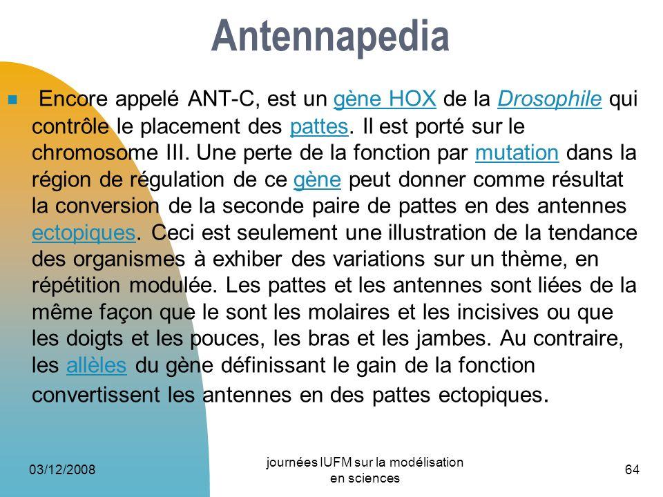Antennapedia Encore appelé ANT-C, est un gène HOX de la Drosophile qui contrôle le placement des pattes. Il est porté sur le chromosome III. Une perte