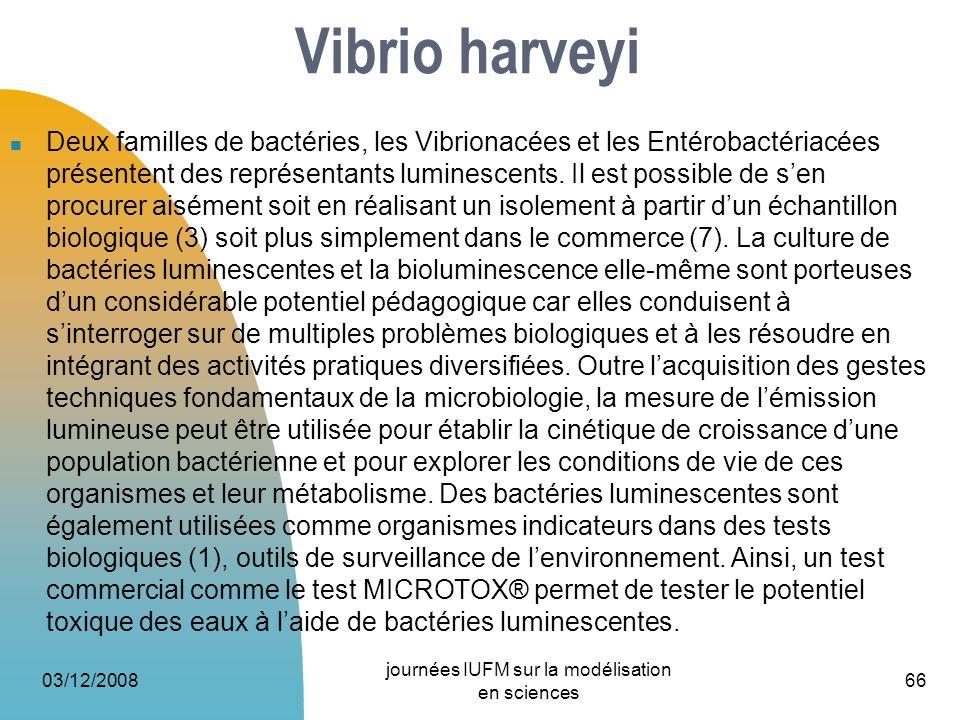 Deux familles de bactéries, les Vibrionacées et les Entérobactériacées présentent des représentants luminescents. Il est possible de sen procurer aisé