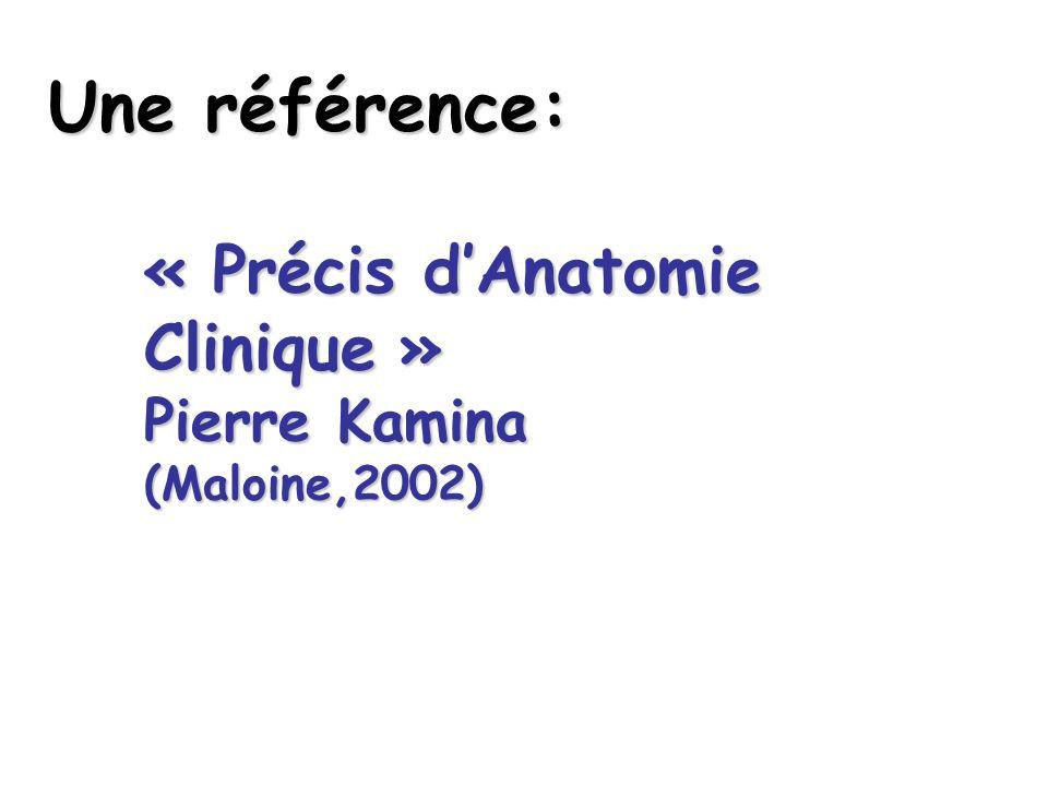Une référence: « Précis dAnatomie Clinique » Pierre Kamina (Maloine,2002)
