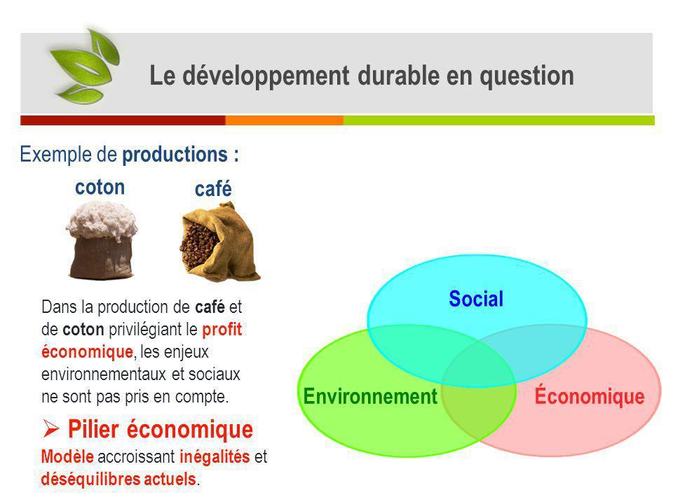 Dans la production de café et de coton privilégiant le profit économique, les enjeux environnementaux et sociaux ne sont pas pris en compte. Économiqu