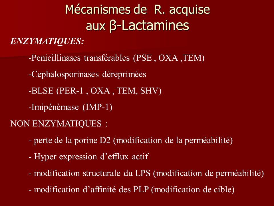 Mécanismes de R. acquise aux β-Lactamines ENZYMATIQUES: -Penicillinases transférables (PSE, OXA,TEM) -Cephalosporinases déreprimées -BLSE (PER-1, OXA,