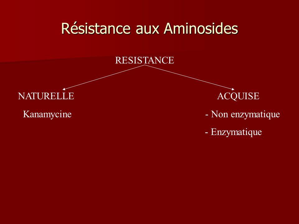Résistance aux Aminosides RESISTANCE NATURELLE ACQUISE Kanamycine - Non enzymatique - Enzymatique