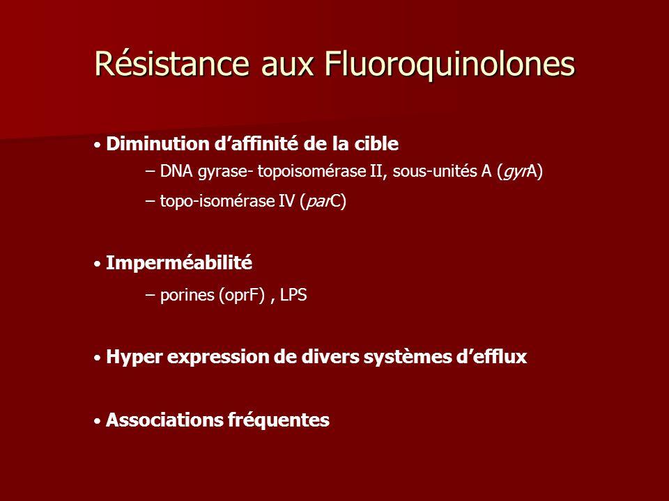 Diminution daffinité de la cible – DNA gyrase- topoisomérase II, sous-unités A (gyrA) – topo-isomérase IV (parC) Imperméabilité – porines (oprF), LPS