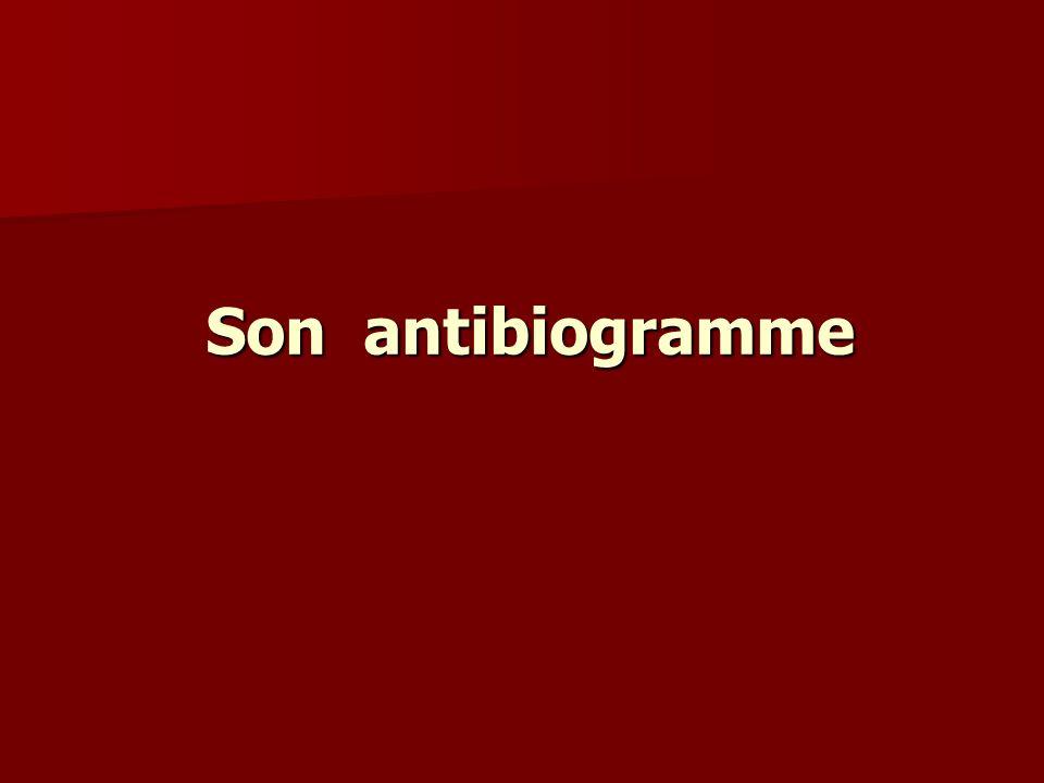 Son antibiogramme
