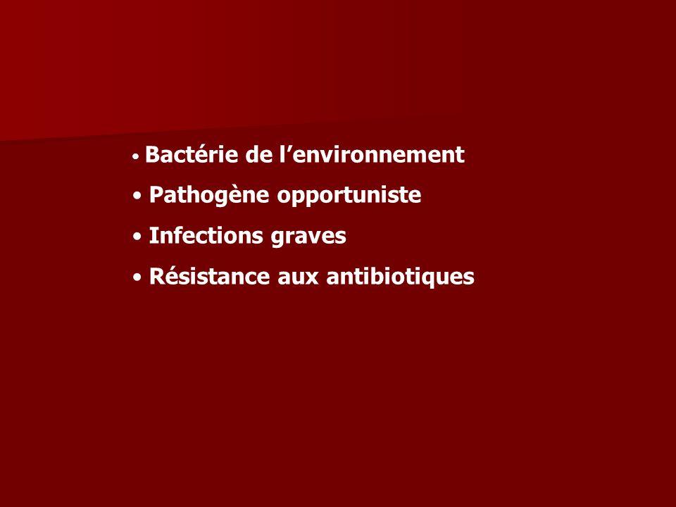 Bactérie de lenvironnement Pathogène opportuniste Infections graves Résistance aux antibiotiques