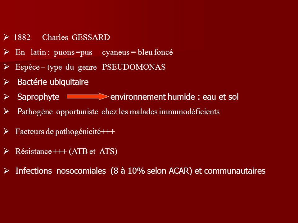 1882 Charles GESSARD En latin : puons =pus cyaneus = bleu foncé Espèce – type du genre PSEUDOMONAS Bactérie ubiquitaire Saprophyte environnement humid