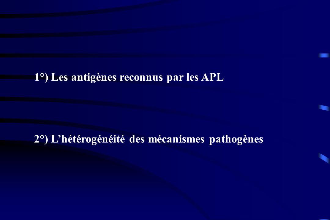 1°) Les antigènes reconnus par les APL 2°) Lhétérogénéité des mécanismes pathogènes