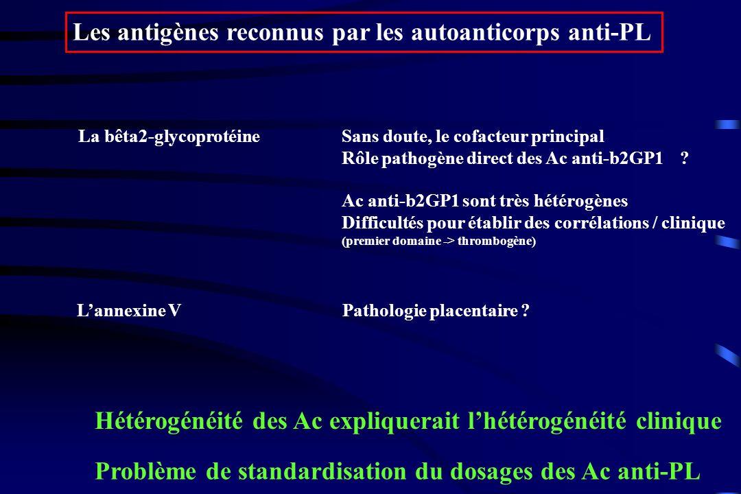 Les antigènes reconnus par les autoanticorps anti-PL La bêta2-glycoprotéineSans doute, le cofacteur principal Rôle pathogène direct des Ac anti-b2GP1