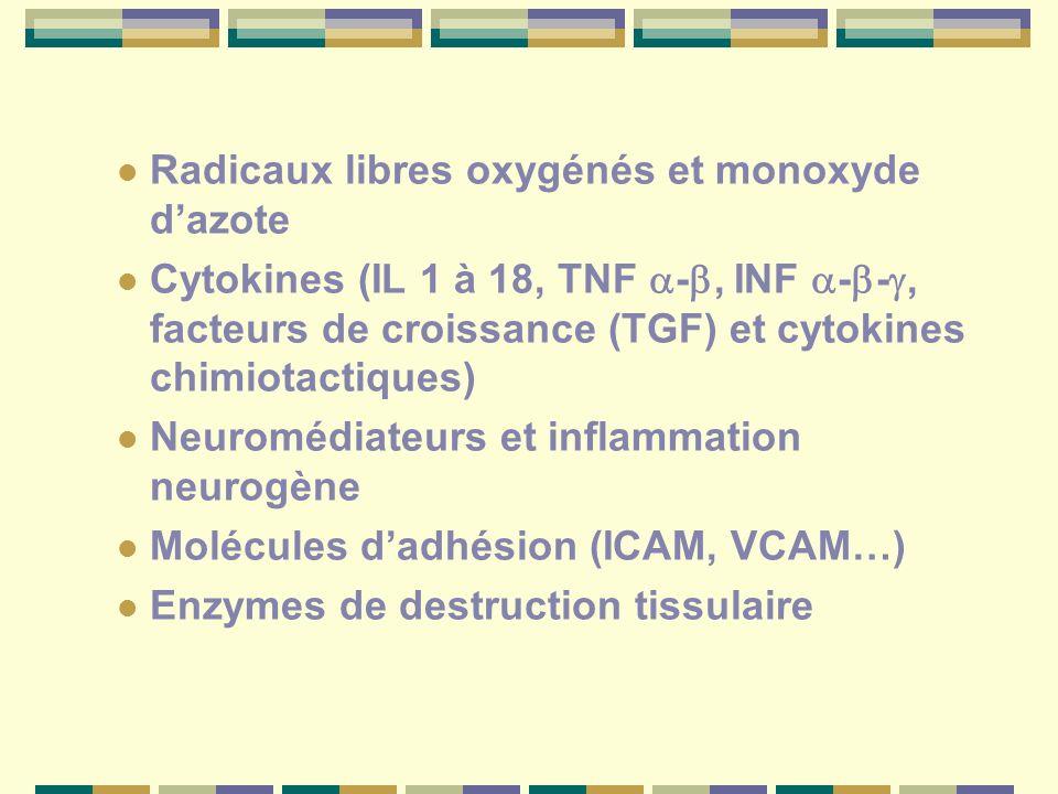 Radicaux libres oxygénés et monoxyde dazote Cytokines (IL 1 à 18, TNF -, INF - -, facteurs de croissance (TGF) et cytokines chimiotactiques) Neuromédiateurs et inflammation neurogène Molécules dadhésion (ICAM, VCAM…) Enzymes de destruction tissulaire