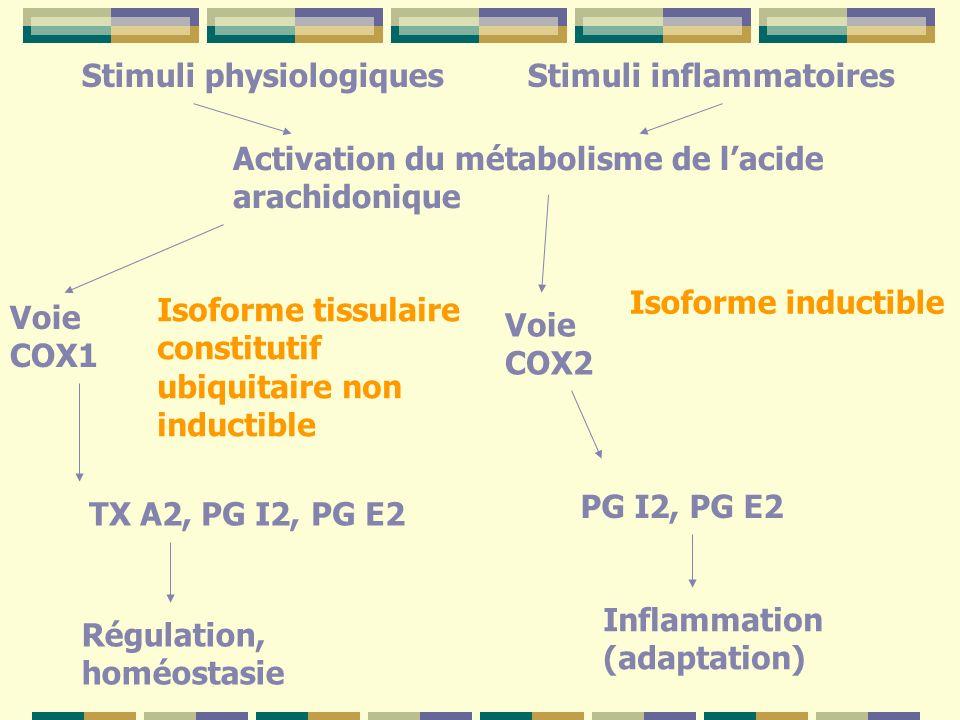 Stimuli inflammatoiresStimuli physiologiques Activation du métabolisme de lacide arachidonique Isoforme inductible Voie COX1 Voie COX2 Isoforme tissulaire constitutif ubiquitaire non inductible TX A2, PG I2, PG E2 PG I2, PG E2 Régulation, homéostasie Inflammation (adaptation)