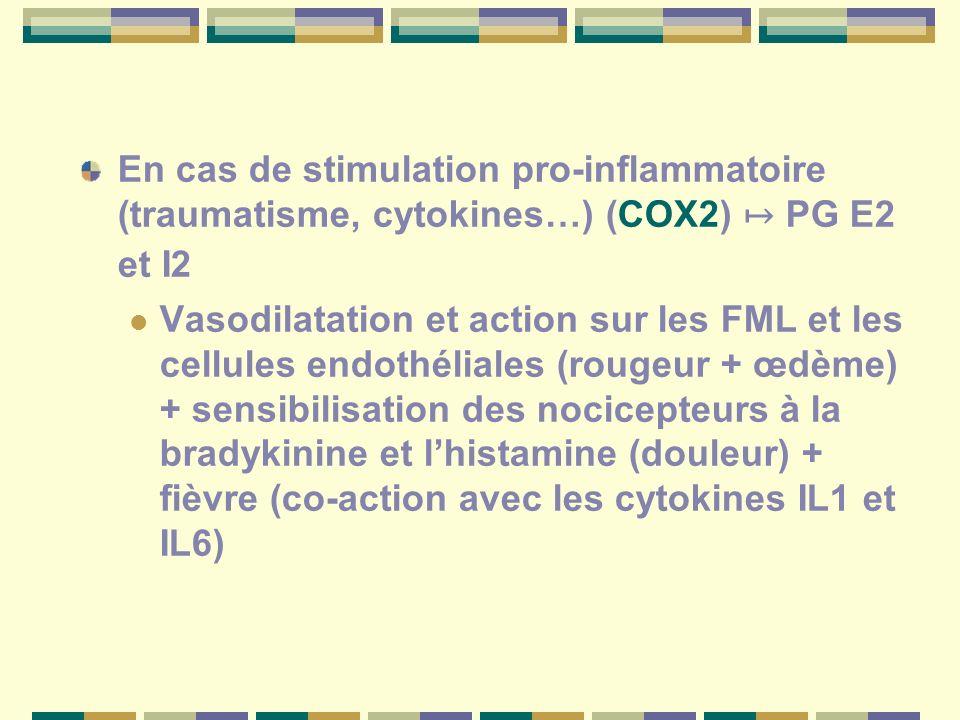 En cas de stimulation pro-inflammatoire (traumatisme, cytokines…) (COX2) PG E2 et I2 Vasodilatation et action sur les FML et les cellules endothéliales (rougeur + œdème) + sensibilisation des nocicepteurs à la bradykinine et lhistamine (douleur) + fièvre (co-action avec les cytokines IL1 et IL6)