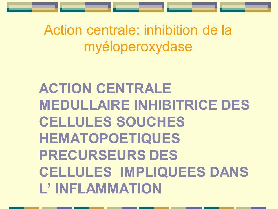 Action centrale: inhibition de la myéloperoxydase ACTION CENTRALE MEDULLAIRE INHIBITRICE DES CELLULES SOUCHES HEMATOPOETIQUES PRECURSEURS DES CELLULES IMPLIQUEES DANS L INFLAMMATION