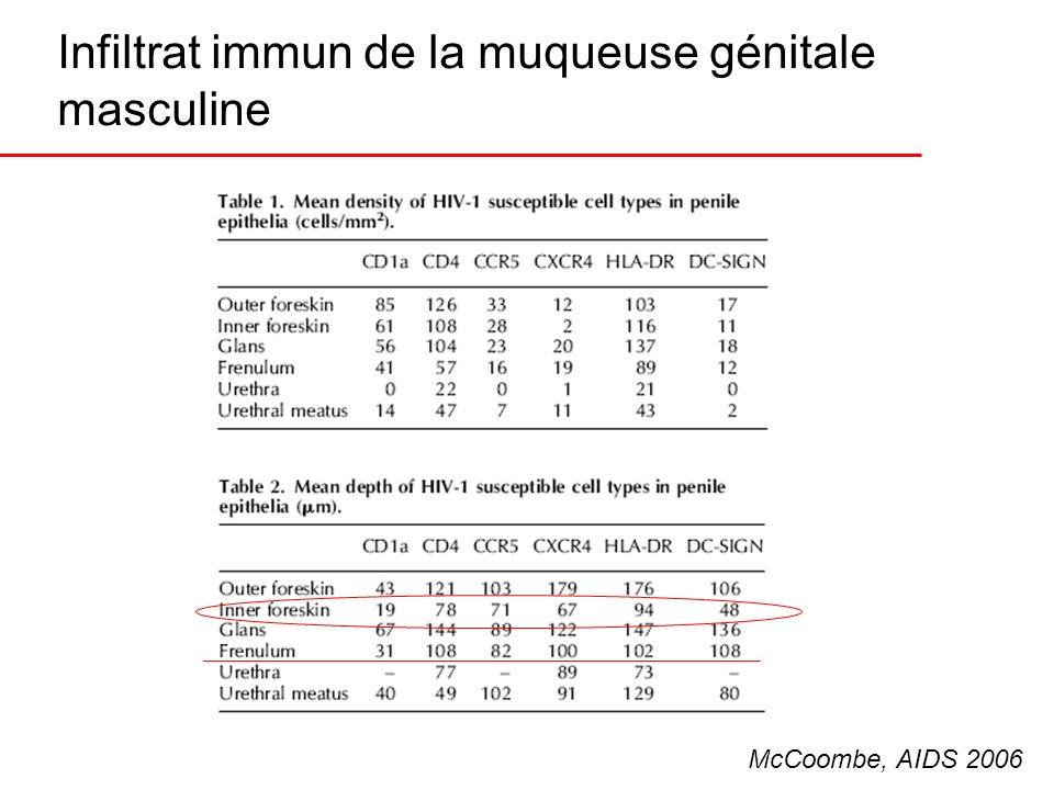 Infiltrat immun de la muqueuse génitale masculine McCoombe, AIDS 2006