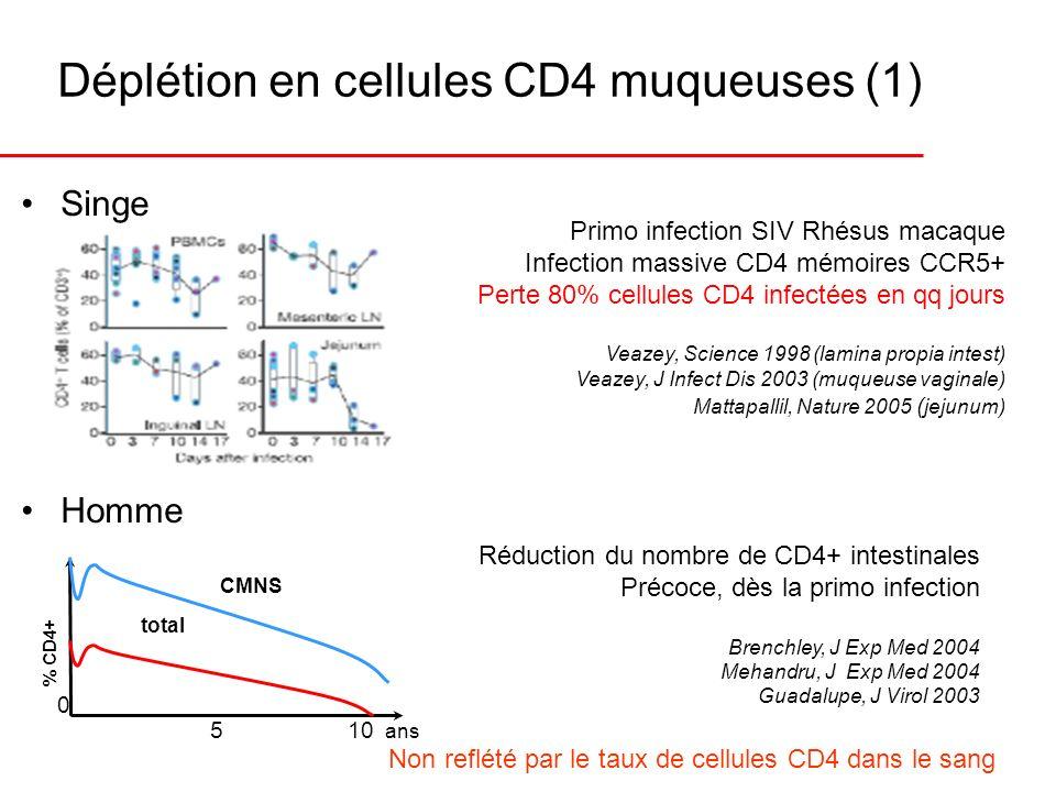 Déplétion en cellules CD4 muqueuses (1) Primo infection SIV Rhésus macaque Infection massive CD4 mémoires CCR5+ Perte 80% cellules CD4 infectées en qq