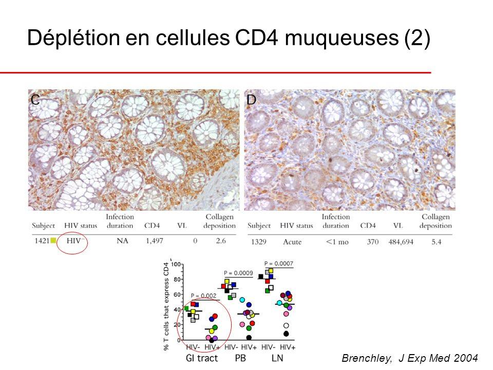 Déplétion en cellules CD4 muqueuses (2) Brenchley, J Exp Med 2004