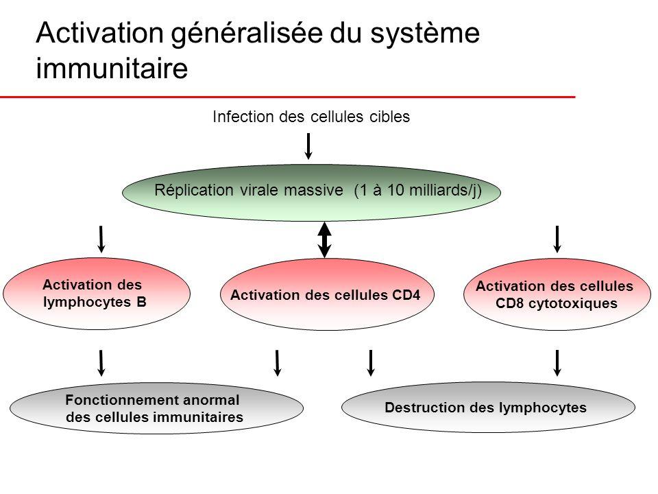 Activation généralisée du système immunitaire Infection des cellules cibles Réplication virale massive (1 à 10 milliards/j) Activation des cellules CD
