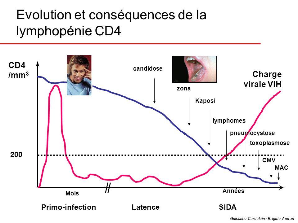Evolution et conséquences de la lymphopénie CD4 Années Primo-infection Latence SIDA Charge virale VIH CD4 /mm 3 candidose zona Kaposi lymphomes pneumo