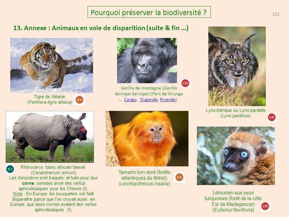 13. Annexe : Animaux en voie de disparition (suite & fin …) 122 Pourquoi préserver la biodiversité ? Tigre de Sibérie (Panthera tigris altaica) Rhinoc