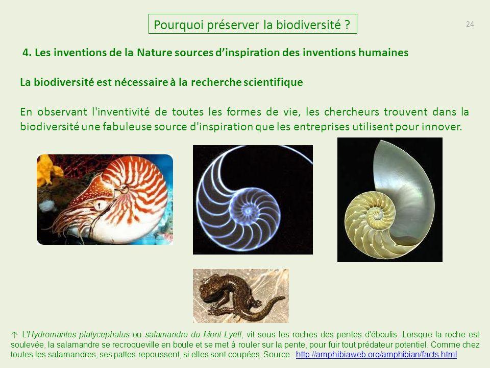 24 Pourquoi préserver la biodiversité .