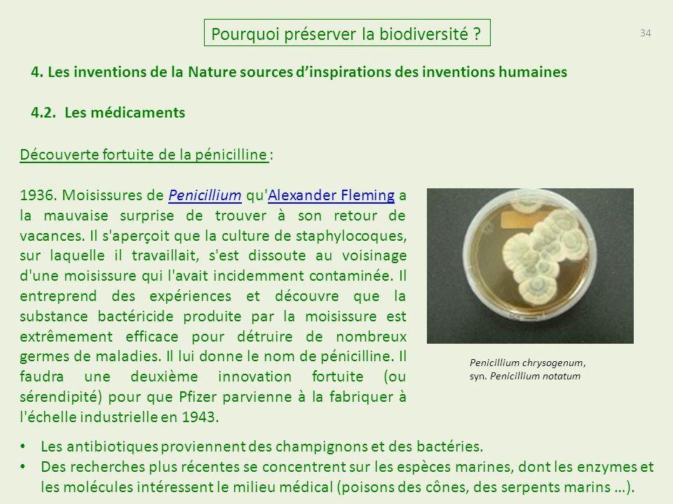 34 Pourquoi préserver la biodiversité .4.