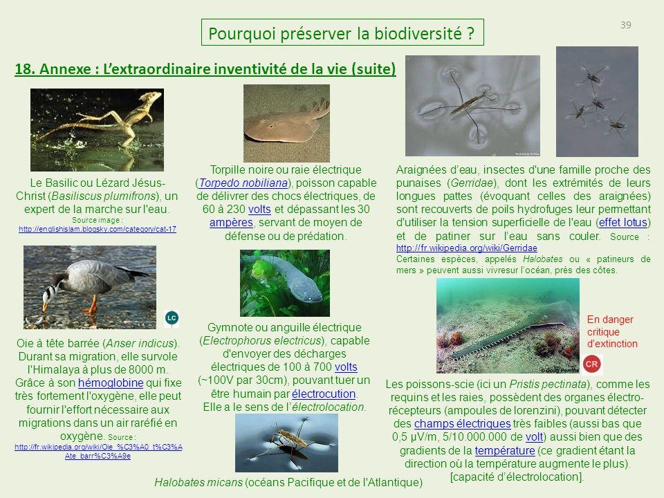 39 Pourquoi préserver la biodiversité .18.
