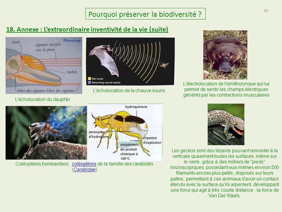 40 Pourquoi préserver la biodiversité .18.