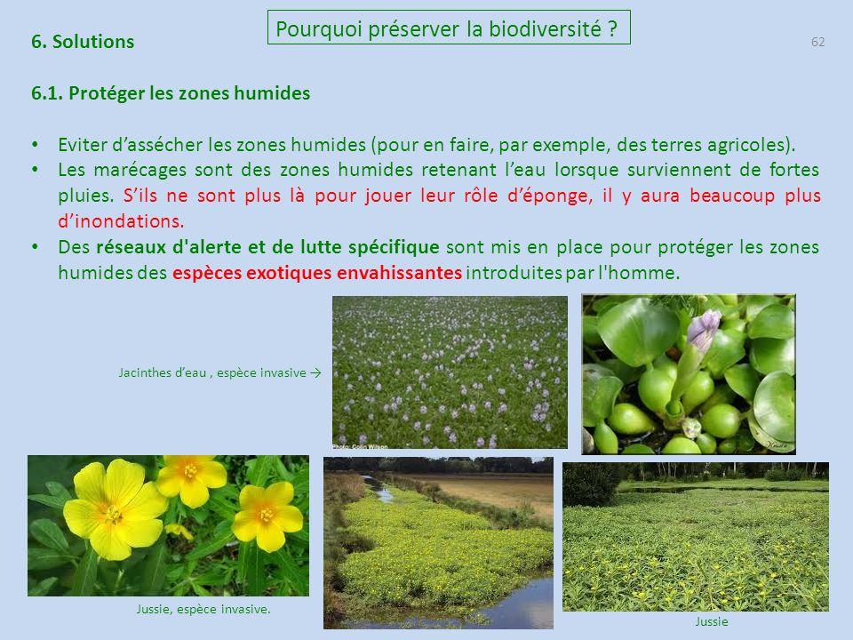 62 Pourquoi préserver la biodiversité .6. Solutions 6.1.