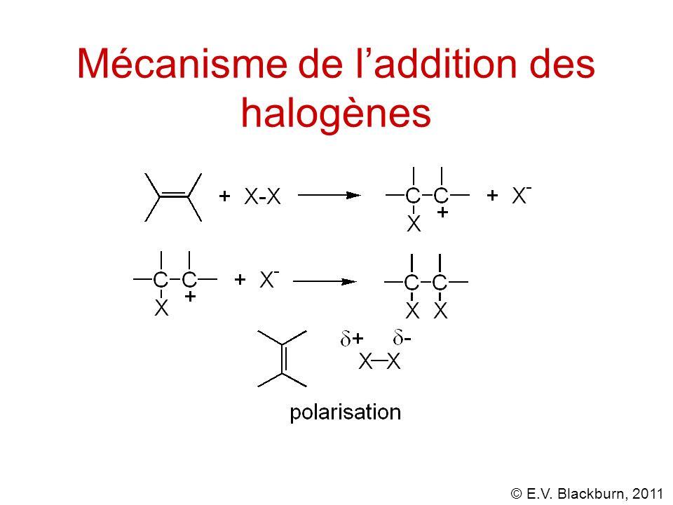 © E.V. Blackburn, 2011 Mécanisme de laddition des halogènes