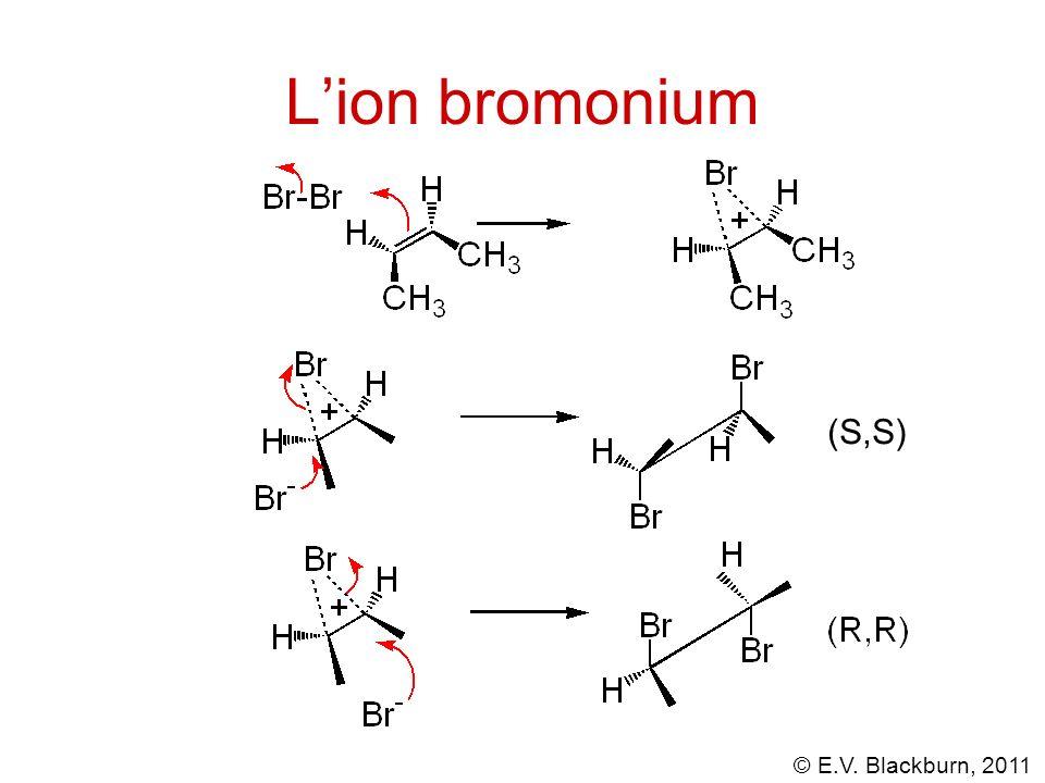 © E.V. Blackburn, 2011 Lion bromonium (S,S)