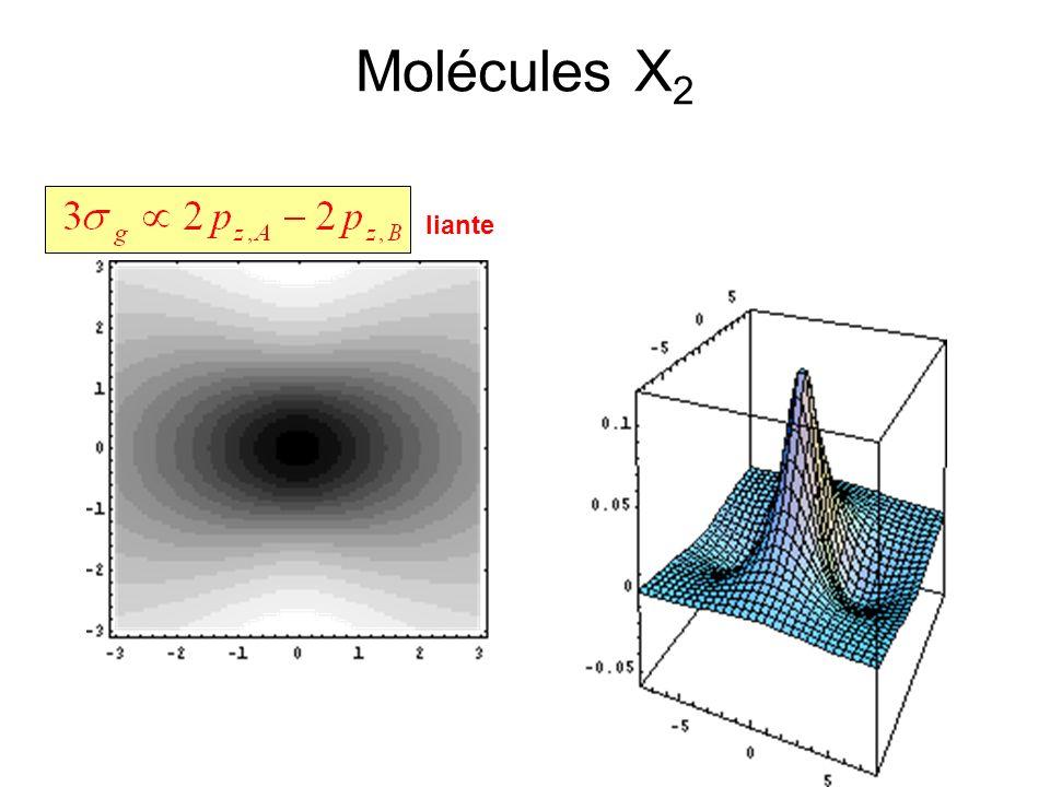 Molécules X 2 liante