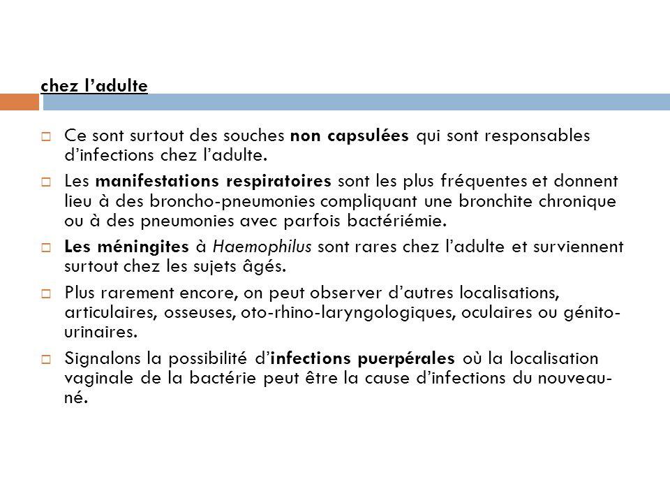 chez ladulte Ce sont surtout des souches non capsulées qui sont responsables dinfections chez ladulte.