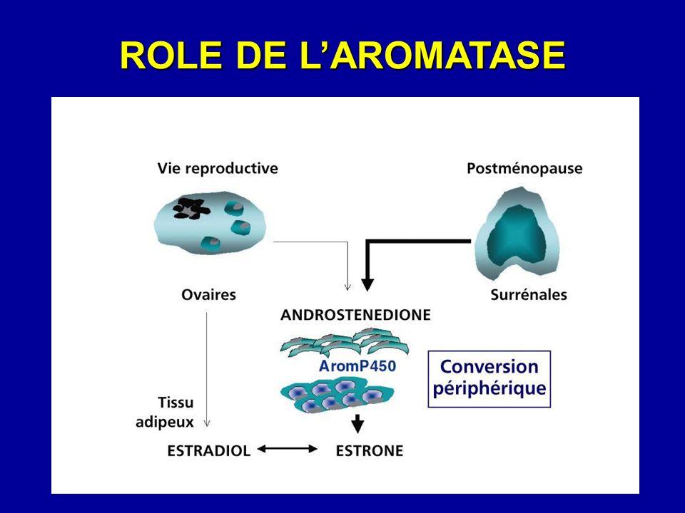 ROLE DE LAROMATASE