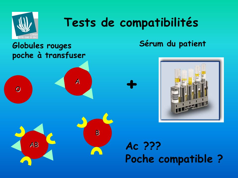 Tests de compatibilités A B AB O Globules rouges poche à transfuser + Sérum du patient Ac ??? Poche compatible ?