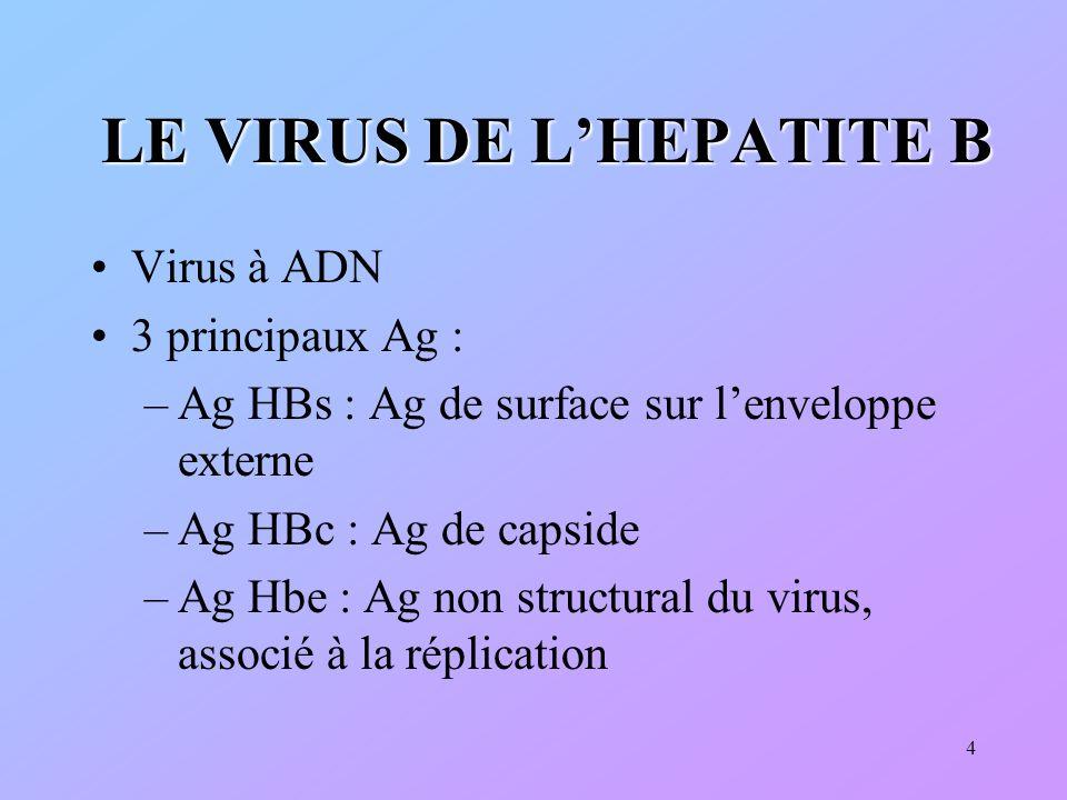 15 LHEPATITE B AIGÜE Définition : altération des hépatocytes Diagnostic clinique (ictère) et/ou biologique (augmentation des transaminases, ALAT 5 à 10N) Evolution : Guérison Hépatite chronique Hépatite fulminante