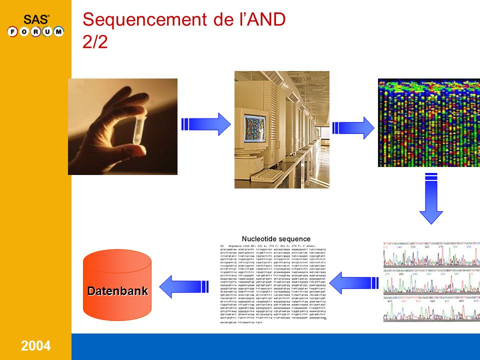 2004 Sequencement de lAND 2/2Datenbank