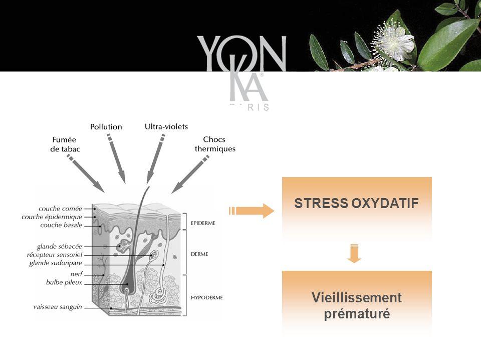 STRESS OXYDATIF Vieillissement prématuré