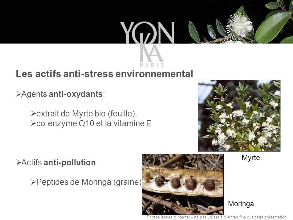 Les actifs anti-stress environnemental Agents anti-oxydants: extrait de Myrte bio (feuille), co-enzyme Q10 et la vitamine E Actifs anti-pollution Peptides de Moringa (graine) Photos issues dinternet – ne pas utiliser à dautres fins que cette présentation Myrte Moringa