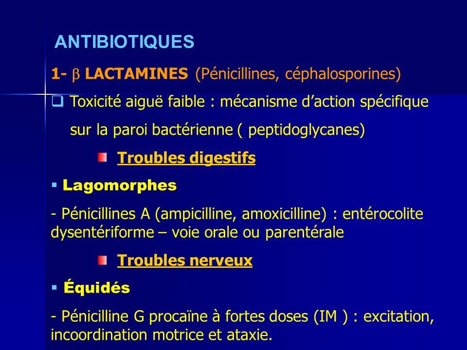 ANTIBIOTIQUES 1- LACTAMINES (Pénicillines, céphalosporines) Toxicité aiguë faible : mécanisme daction spécifique sur la paroi bactérienne ( peptidoglycanes) Troubles digestifs Lagomorphes - Pénicillines A (ampicilline, amoxicilline) : entérocolite dysentériforme – voie orale ou parentérale Troubles nerveux Équidés - Pénicilline G procaïne à fortes doses (IM ) : excitation, incoordination motrice et ataxie.