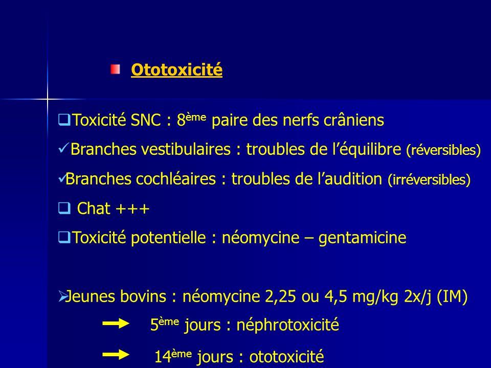 Ototoxicité Toxicité SNC : 8 ème paire des nerfs crâniens Branches vestibulaires : troubles de léquilibre (réversibles) Branches cochléaires : troubles de laudition (irréversibles) Chat +++ Toxicité potentielle : néomycine – gentamicine Jeunes bovins : néomycine 2,25 ou 4,5 mg/kg 2x/j (IM) 5 ème jours : néphrotoxicité 14 ème jours : ototoxicité