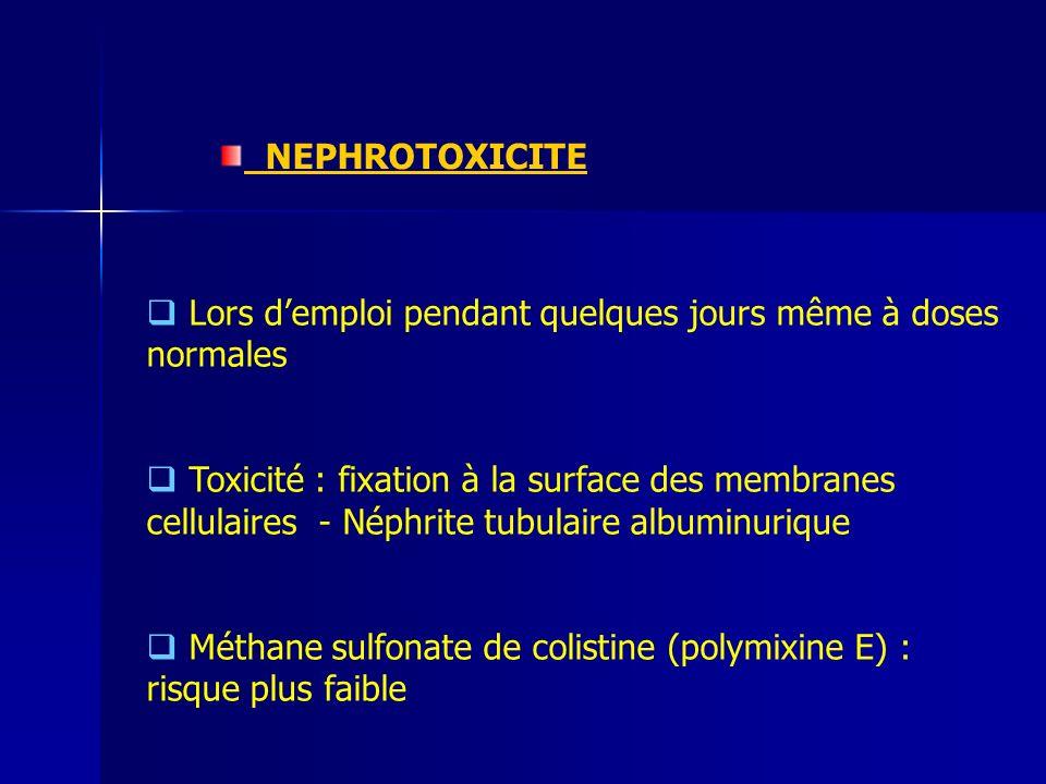 NEPHROTOXICITE Lors demploi pendant quelques jours même à doses normales Toxicité : fixation à la surface des membranes cellulaires - Néphrite tubulaire albuminurique Méthane sulfonate de colistine (polymixine E) : risque plus faible