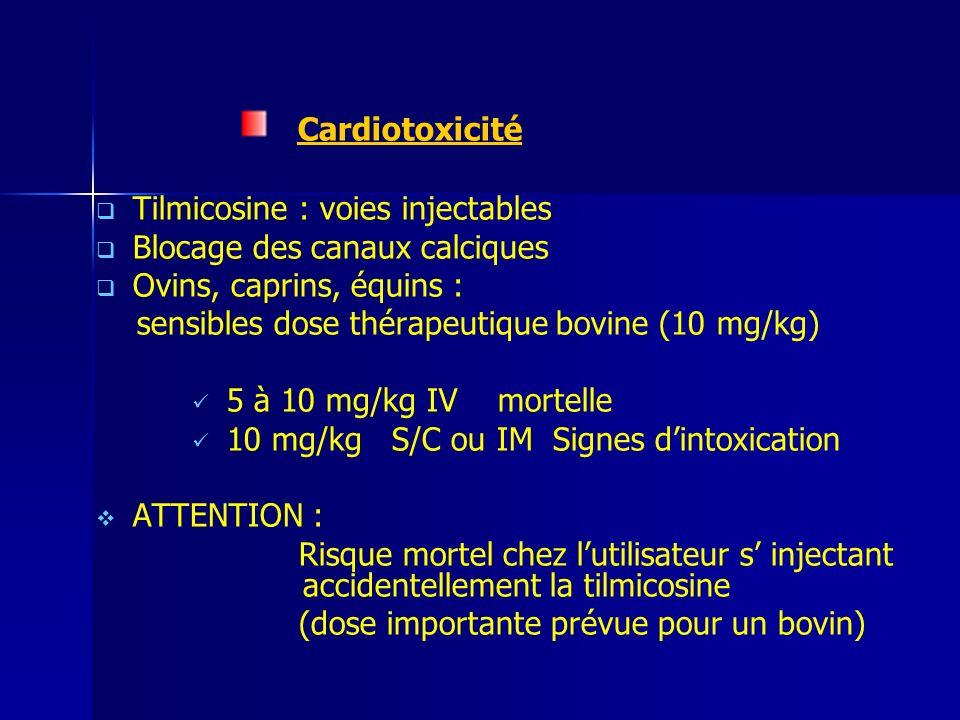 Cardiotoxicité Tilmicosine : voies injectables Blocage des canaux calciques Ovins, caprins, équins : sensibles dose thérapeutique bovine (10 mg/kg) 5