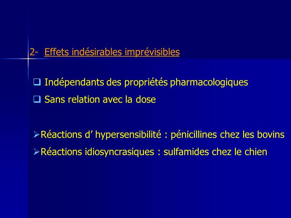 2- Effets indésirables imprévisibles Indépendants des propriétés pharmacologiques Sans relation avec la dose Réactions d hypersensibilité : pénicillines chez les bovins Réactions idiosyncrasiques : sulfamides chez le chien