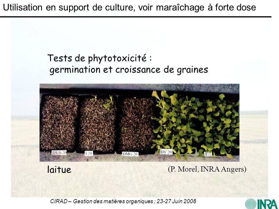 CIRAD – Gestion des matières organiques ; 23-27 Juin 2008 laitue Tests de phytotoxicité : germination et croissance de graines (P. Morel, INRA Angers)