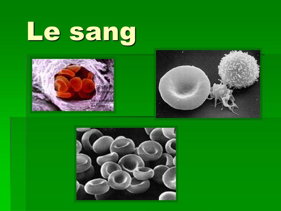 Composition du sang Plasma 55 % Globules rouges ( érythrocytes) 45 % ( 40 à 52 % chez l 37 à 48 % chez la ) Plaquettes ( thrombocytes) 1% Globules blancs ( leucocytes) 1% Produits dans la moelle rouge des os
