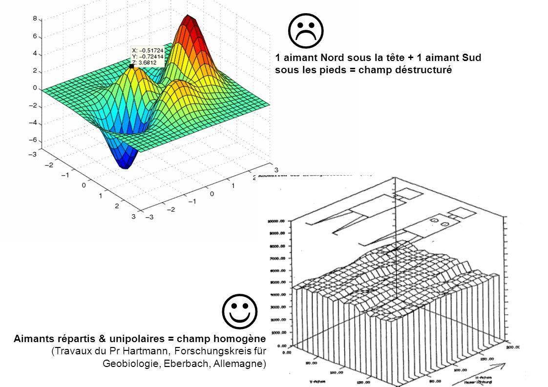 Aimants répartis & unipolaires = champ homogène (Travaux du Pr Hartmann, Forschungskreis für Geobiologie, Eberbach, Allemagne) 1 aimant Nord sous la t
