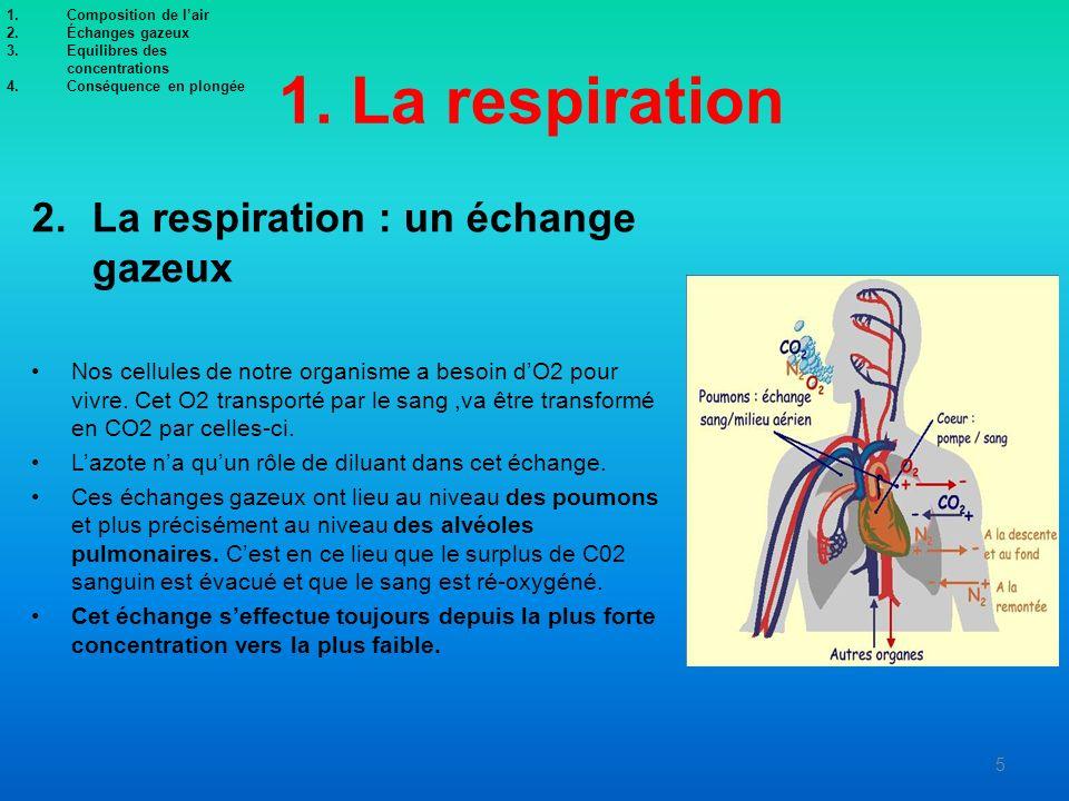 1. La respiration 2.La respiration : un échange gazeux Nos cellules de notre organisme a besoin dO2 pour vivre. Cet O2 transporté par le sang,va être