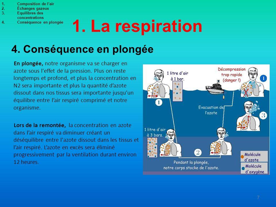 1. La respiration En plongée, notre organisme va se charger en azote sous l'effet de la pression. Plus on reste longtemps et profond, et plus la conce