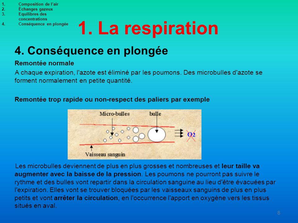 1. La respiration 4. Conséquence en plongée Remontée normale A chaque expiration, l'azote est éliminé par les poumons. Des microbulles d'azote se form