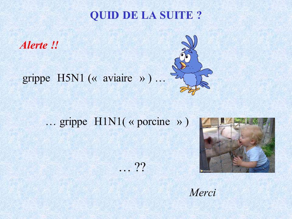 QUID DE LA SUITE ? Alerte !! grippe H5N1 (« aviaire » ) … … grippe H1N1( « porcine » ) … ?? Merci