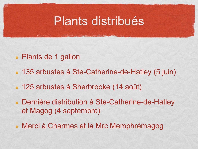 Plants distribués Plants de 1 gallon 135 arbustes à Ste-Catherine-de-Hatley (5 juin) 125 arbustes à Sherbrooke (14 août) Dernière distribution à Ste-C
